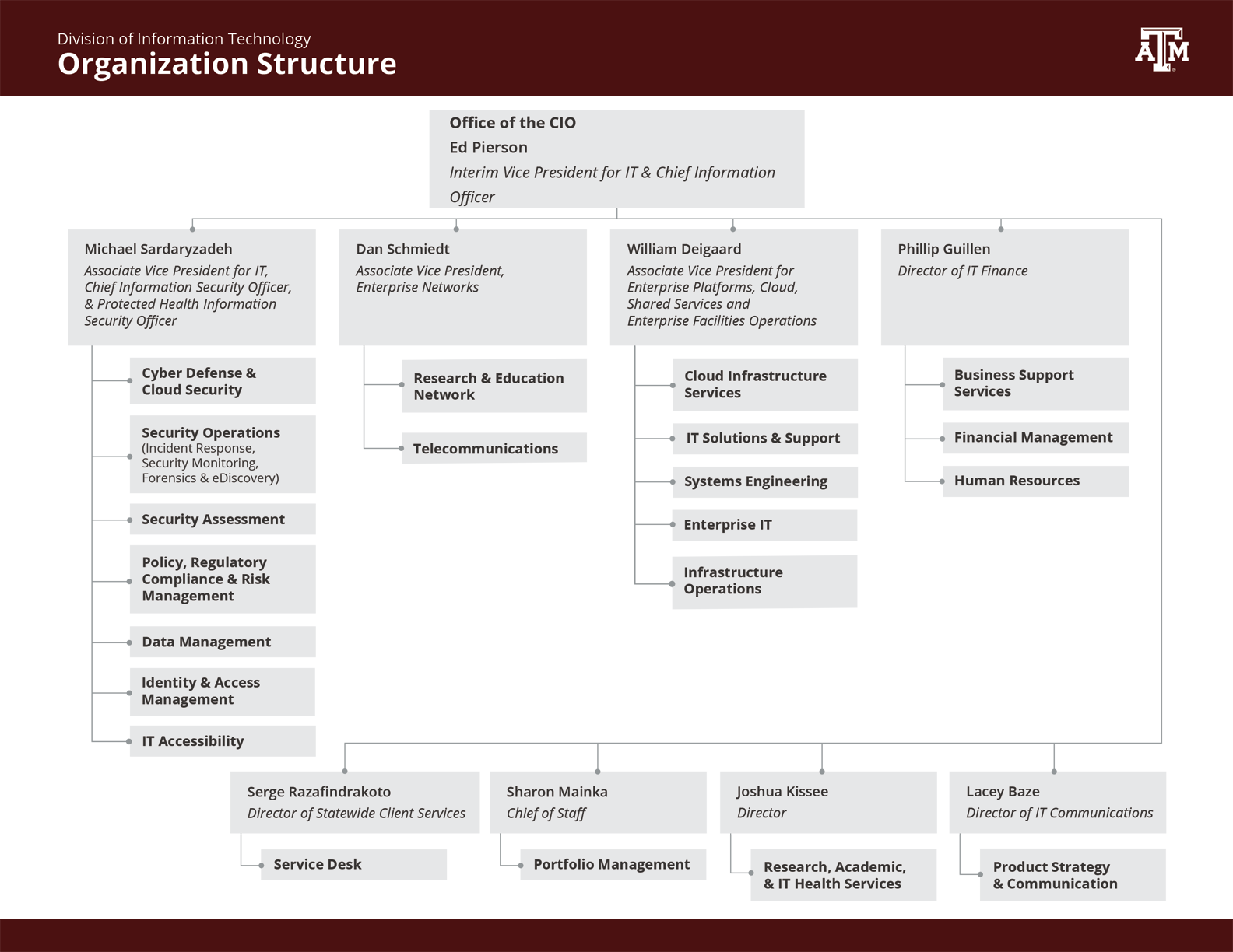 Overview of the Division of IT organization structure.